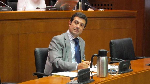 El director general de Función Pública, Ignacio Zarazaga.