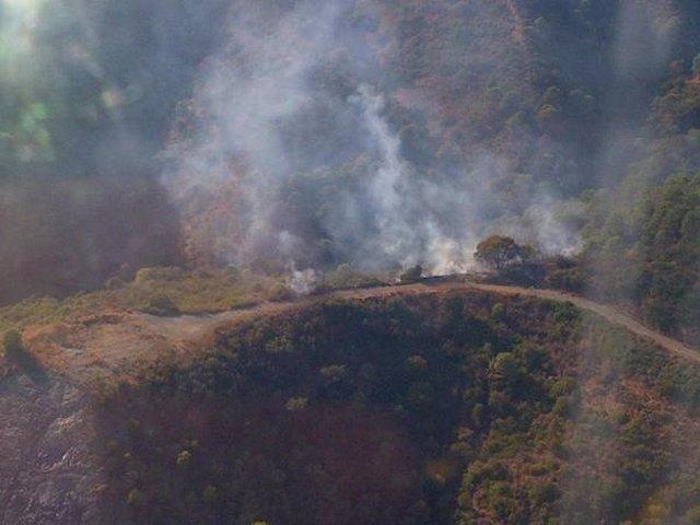 Estepona incendio velerín paraje forestal medio aéreo infoca