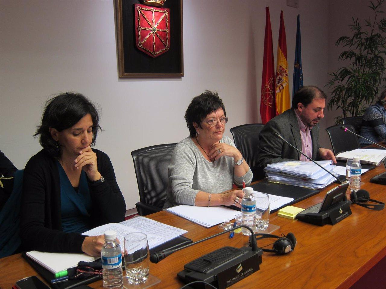 María José Beaumont en comisión parlamentaria