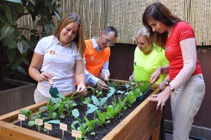 Más de 1.900 empleados de Novartis en España participan en la quinta Semana 'Be Healthy'