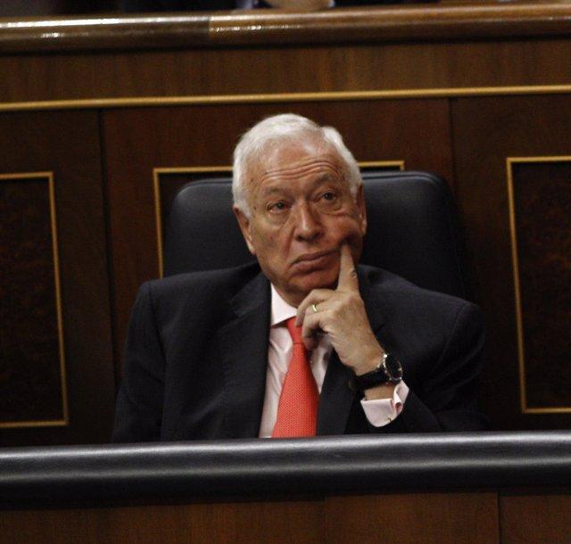 José Manuel García Margallo, ministro de Asuntos Exteriores