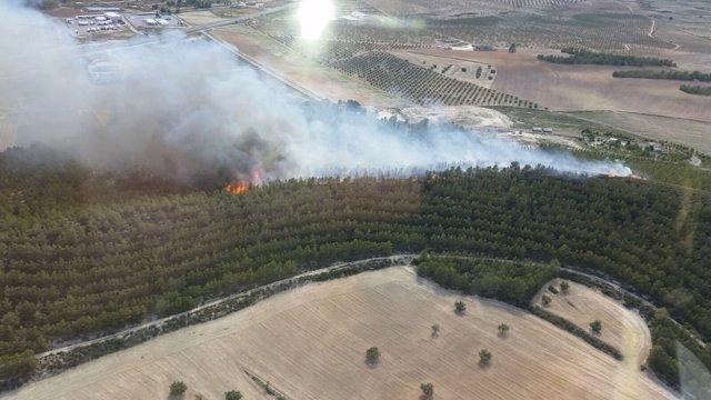 Incendio forestal en Cabezo del Doctor