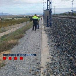 Mossos inspeccionando la línea de AVE afectado