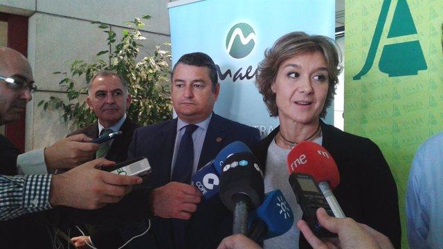 Ministra de Agricultura, Alimentación y Medio Ambiente, Isabel García Tejerina