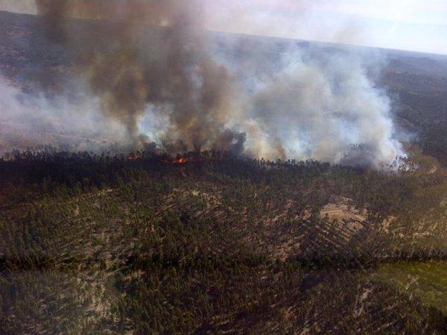 Incendio forestal en Zalamea la Real (Huelva)