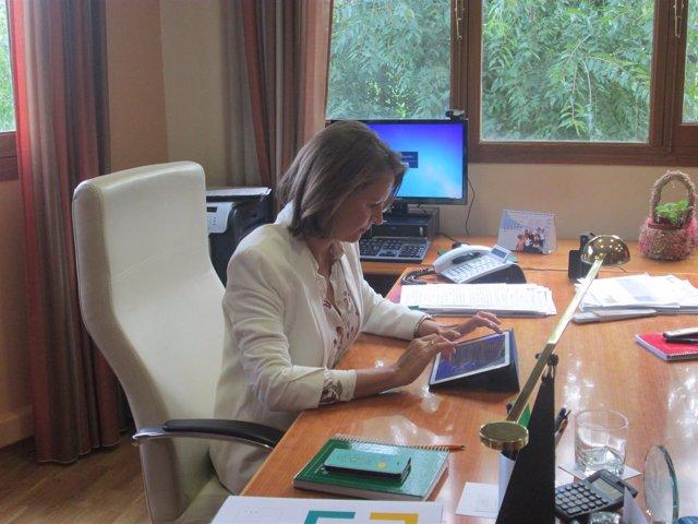 La delegada del Gobierno, Ana Cobo, en su despacho