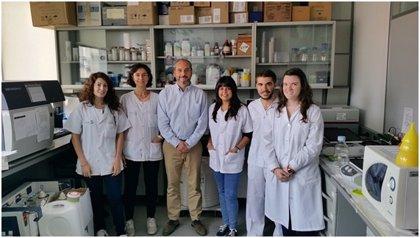 Grandes avances en estudios de cáncer de mama y ovario por investigadores españoles