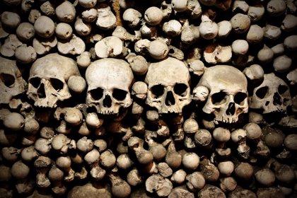 La peste infectó a los humanos 3.000 años antes de lo que se pensaba