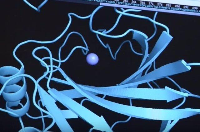 Bacteria que neutraliza CO2