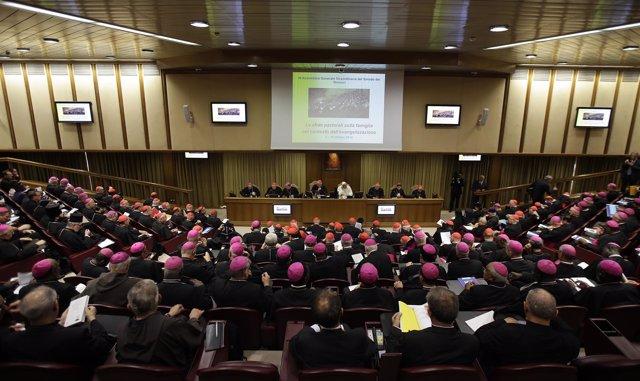 Sínodo de obispos en el Vaticano