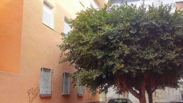 Calle Juan de la Cosa de Almería