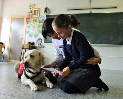 Purina lleva perros a las aulas para sensibilizar a los escolares