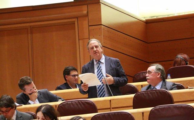 Iñaki Anasagasti ante el pleno del Senado