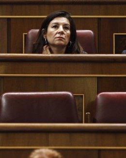 Carmen Rodríguez Maniega
