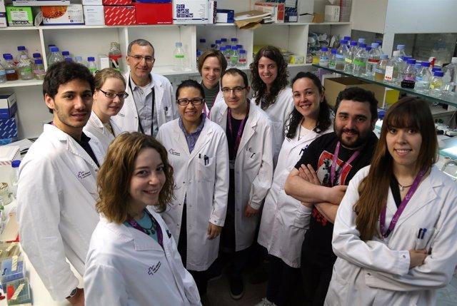 Científicos del CIBBIM-Nanomedicine del VHIR