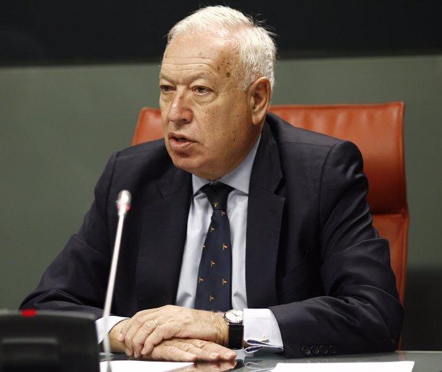 José Manuel García-Margallo en Madrid