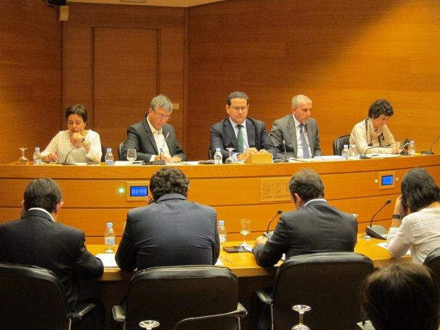 Rafael Climent en la Comisión de Economía de las Corts
