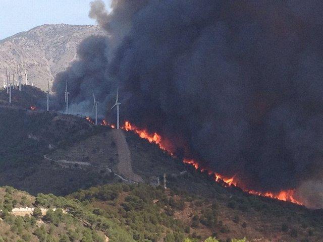 Incendio declarado en la Sierra de Lújar