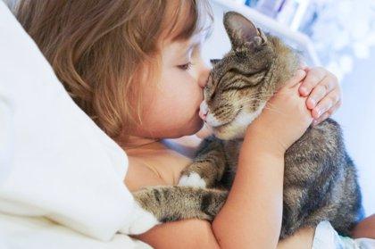 Cómo elegir la mejor mascota para los niños