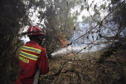 Bogotá registra cinco incendios al día desde que comenzó 2015