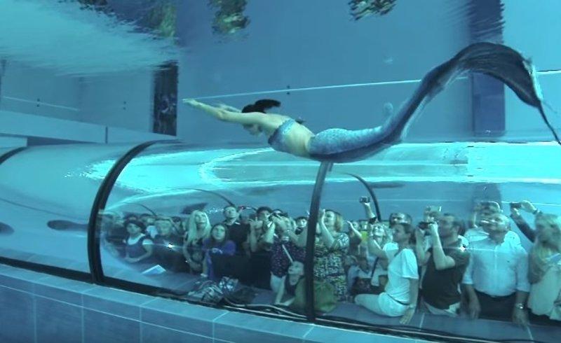 Una sirena de la vida real cautiva facebook nadando en la - Colorazione sirena pagina sirena ...