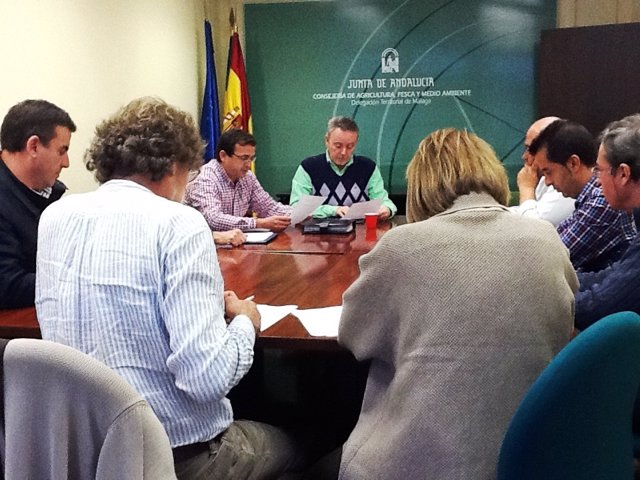 Reunión sobre avispilla Junta y organizaciones agrarias