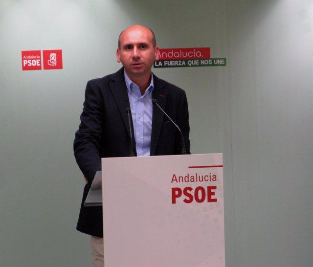 Francisco Conejo PSOE andalucía