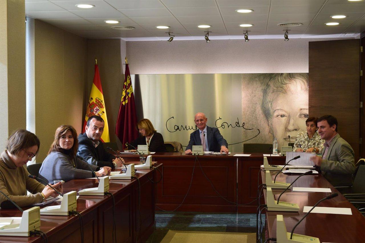Comisión de Sanidad y Asuntos Sociales de la Asamblea