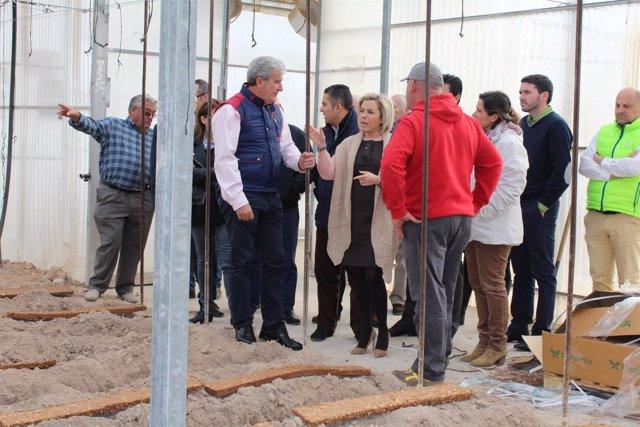 Martínez-Cachá en su visita al Centro de Demostración 'El Mirador' de San Javier