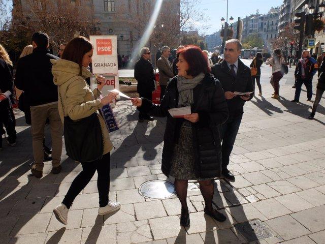 Reparto de información electoral del PSOE en Granada.