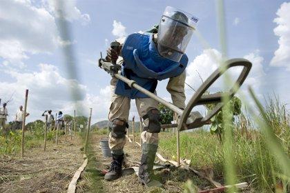 """El Gobierno y las FARC destacan los """"resultados positivos"""" del desminado en El Orejón"""