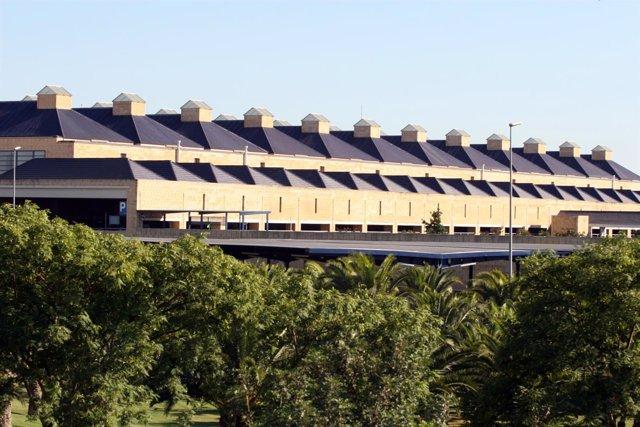 Terminal Del Aeropuerto De San Pablo