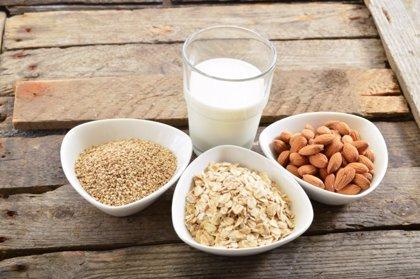 Tipos de leches vegetales: ¿cuál es mejor?