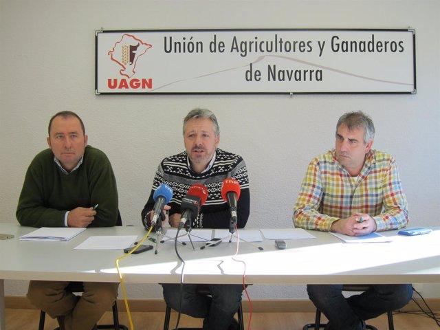 David Lezáun, Félix Bariáin y Luis Miguel Serrano, de UAGN