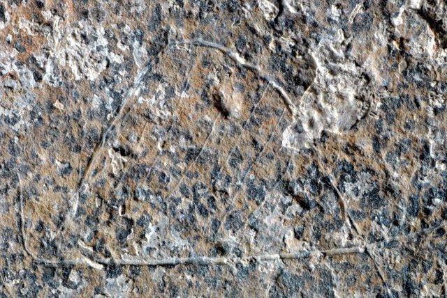 Uno de los motivos grabados en una placa hallada en el Molí del Salt
