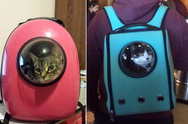 lo mochilas transportar para astronautas como en están Amazon gatos Estas petando Yq1xwf1
