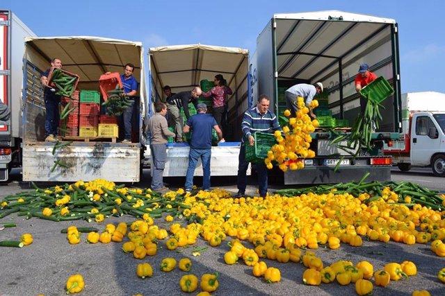 Agricultores arrojan pepinos y pimientos por las bajas cotizaciones
