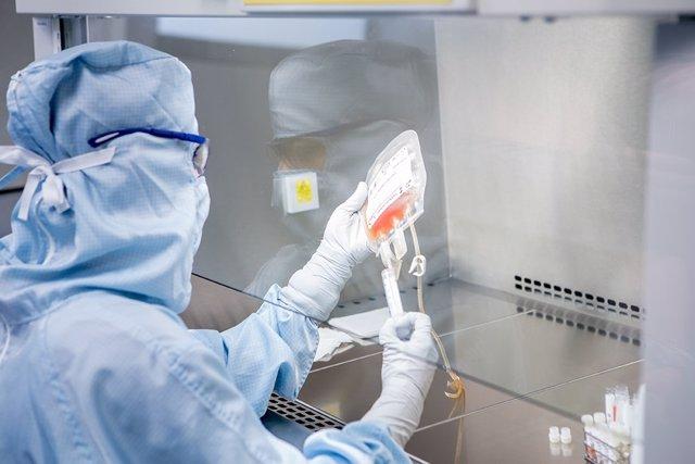 Sevibe Cells_processament de mostra de cèl·lules madre del cordó umbilical b