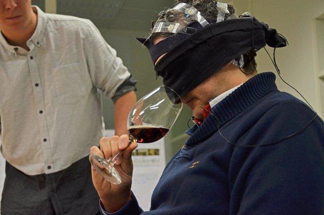 Investigación 'Los sonidos del vino'