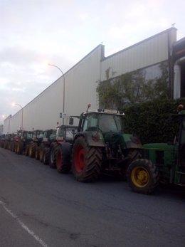 Foto Tractores