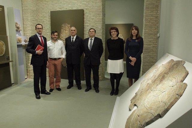 La UZ inaugura el Museo de Ciencias Naturales