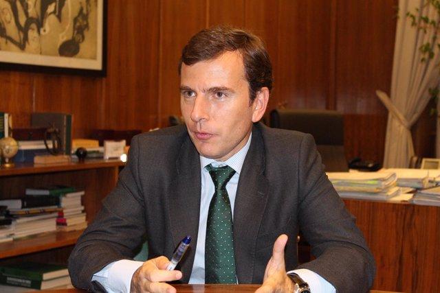 El secretario de Estado de Medio Ambiente, Pablo Saavedra