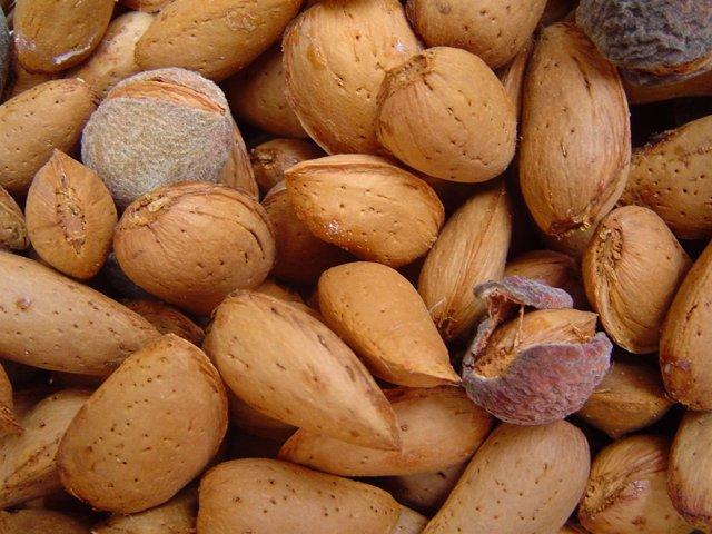 Almendras, frutos secos, frutos de cáscara