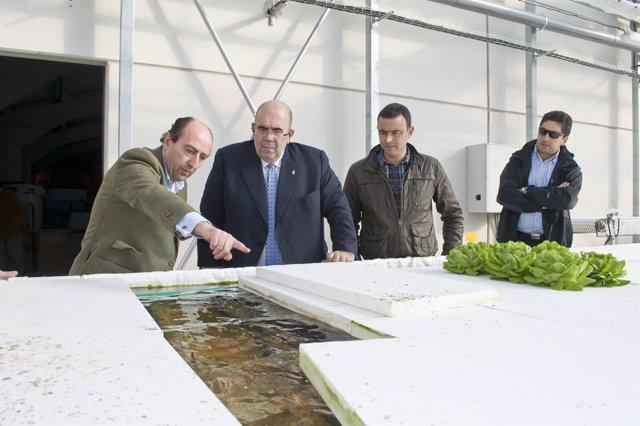 Visita del consejero Jesús Oria a un invernadero para cultivo hidropónico