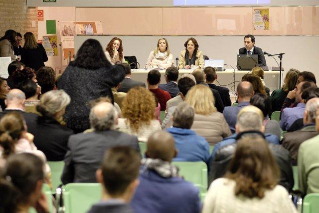 Presentación de estrategia de proyectos de Desarrollo Urbano