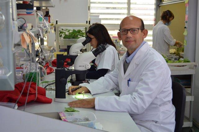 El Catedrático De Producción Vegetal De La UPCT, Pablo Bielza, Nuevo Presidente
