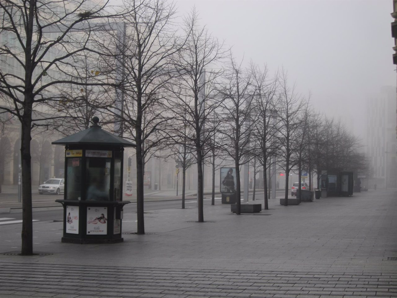Niebla y frío en la capital aragonesa.