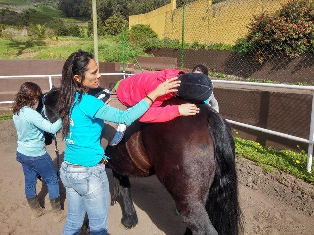 Terapia asistida por caballos, una ayuda para la discapacidad