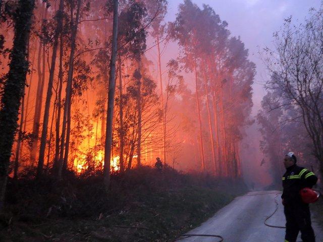 Incendio en Torrelavega