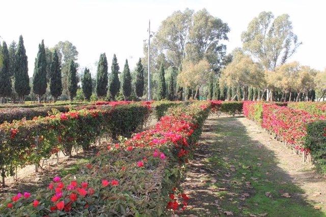 Parque Zafra de Huelva.